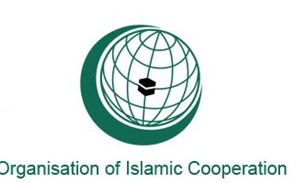 OIC foreign ministers meet over roadmap on ending Israeli violence